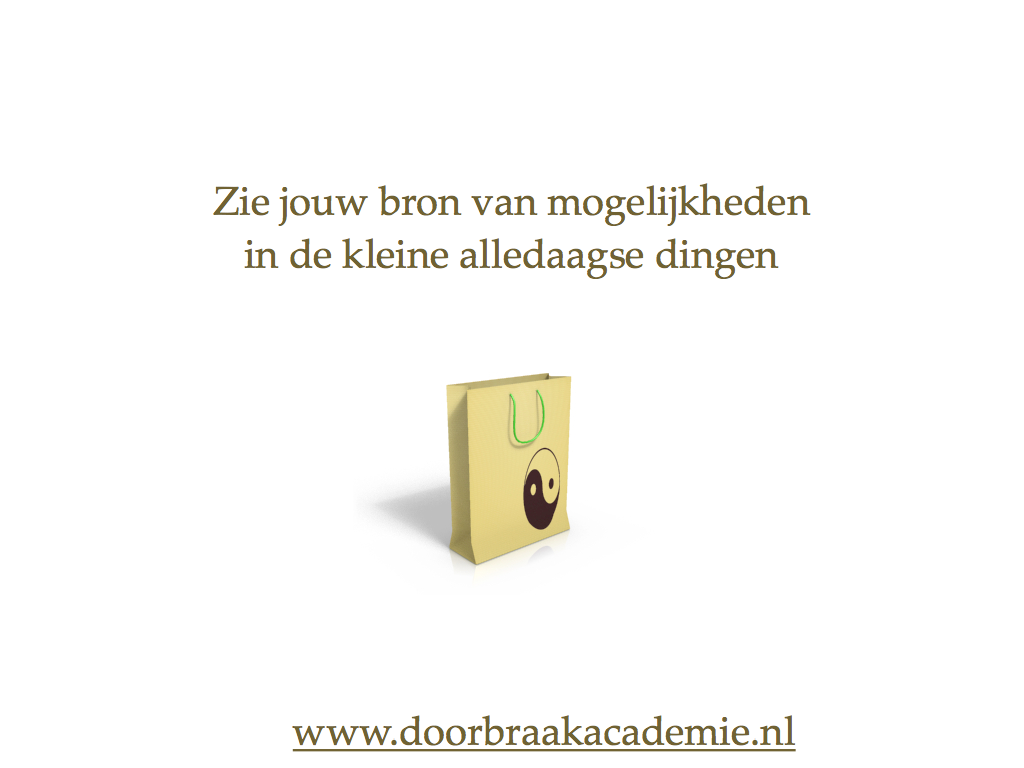 Principe 2: Denk Klein